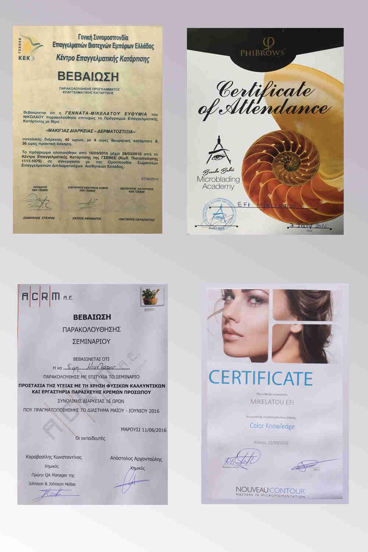 Εκπαίδευση και πιστοποίηση πάνω στις τεχνικές μόνιμου μακιγιάζ, τατουάζ φρυδιών, microblading, δερματοστιξιας και Scalp Micro-pigmentation.